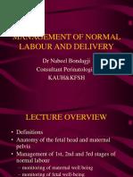 34976 Normal Labour