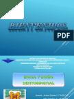 Diapositivas Encia y Union Dentogingival