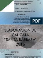 edafologia calicata.pptx