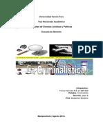 Mapaconceptualcriminalistica 140825234941 Phpapp02 (1)