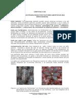 PATO 3. Factores Abioticos