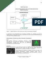 PATO 4. Factoress Bioticos