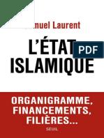 Samuel Laurent, L'Etat Islamique