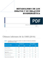 Metabolismo de Los Carbohidratos y Su Relación Bioenergética