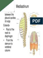 Mediastinum by .pdf