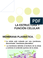 Mebrana Celular Difusion y Osmosis