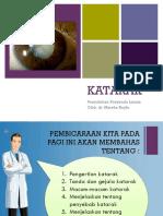 PTM-KATARAK Minpro