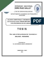 Tesis Trucha.pdf
