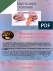 TANATOLOGIA (1).pptx