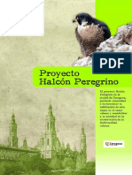 Proyecto Nido Halcon Hospital Zaragoza Mutua Maz