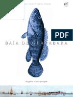 Bai a de Guanabara