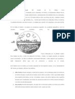 Concepción e Imagen Del Mundo en La Cultura Inca