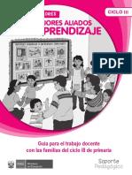 Guía docente ciclo III D-2017.pdf