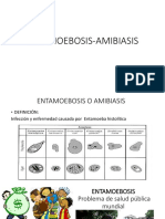 ENTAMOEBOSIS-AMIBIASIS