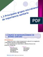 1.3 Gpos Microbianos