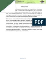 Informe de Extraccion Forestal