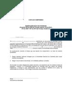 Carta Compromiso Acuerdo 070 2009 CA