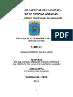 etiologia-del-capuli[1]