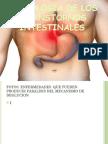 Fisiologiadelostranstornosintestinales 150602212508 Lva1 App6891