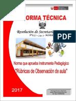 FICHA Y NORMA DE MONITOREO 2017 - RUBRICAS.pdf