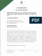 RESOLUCIONES ADOPTADAS POR EL PLENO DEL CONSEJO NACIONAL ELECTORAL