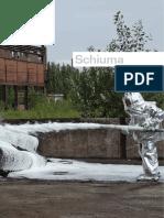 firing_schiuma.pdf