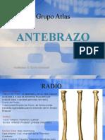 Anatomia Clase 4 Antebrazo Mano
