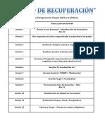 10 a 16 Sesiones Grupo Transicion