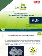Presentación Prevención Enfermedades Profesionales (Silicosis) (Versión ...