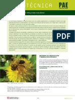 Apicultura Ecologica PAE