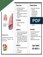 leaflet-tb-paru-anak.docx