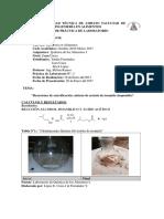 Quimica de Los Alimentos Informe 8