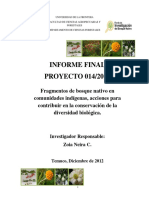 014 2010 Neira UFRO Informe Final