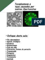 Toxoplasmose_2012.pdf