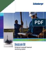 deeplook_em_brochure.pdf