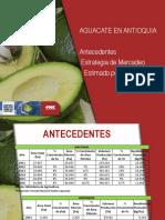 Presentacion Aguacate.ppt2