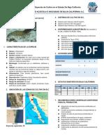 FICHA TEC. SANITARIA DE L. VANNAMEI_070616204151.pdf