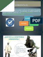 AMB.pptx