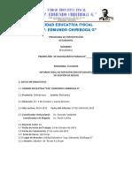 Informe Final Campo de Accion