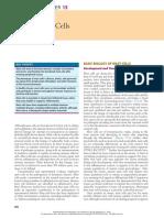 15 Mast Cells.pdf