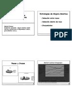 12a - Mejoramiento genetico en ganado lechero I.pdf