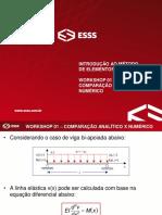 WS01 - Comparação Analitico Numerico