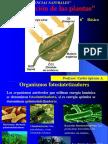 Nutricion de Las Plantas 6b 2014