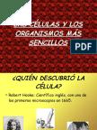 resumenlacelula-130118060741-phpapp01.odp