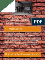 PRUEBAS Y ENSAYOS SEGÚN LA E-070 diapositivas.pptx
