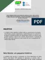 Apresentação Seminário Geocritica Historia de la Eletrificcion. Universidade de Barcelona. 2017. Belo Monte.pptx