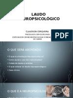 LAUDOS NEUROPSICOLÓGICOS