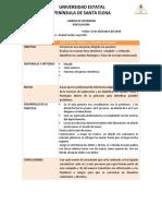 informe de pract.docx