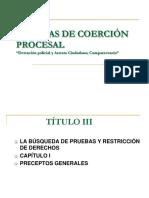 LA_DETENCION_POLICIAL_Y_EL_ARRESTO_CIUDADANO