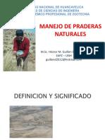 DEFINICION de MANEJO DE PRADERAS.ppt